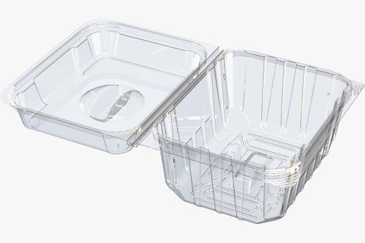 Open Hinged Container