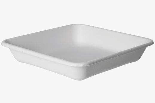 SugarcaneTakeOut Container Square 230mm